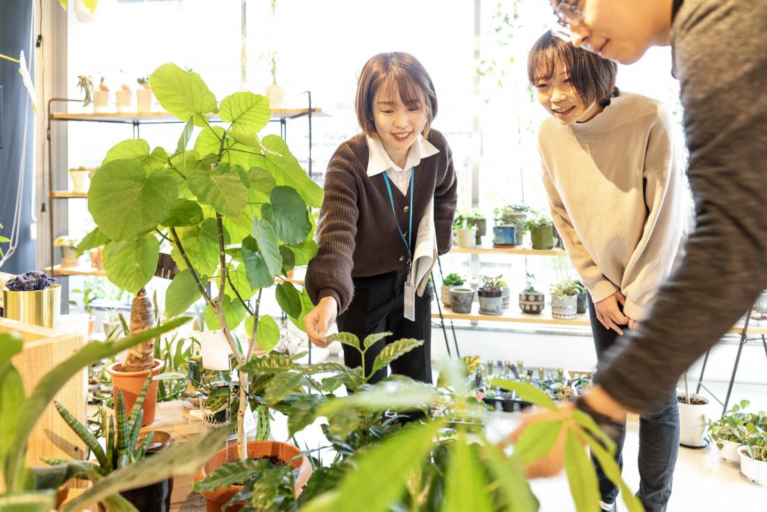 暮らしに余白を感じる観葉植物のお店 アイキャッチ画像